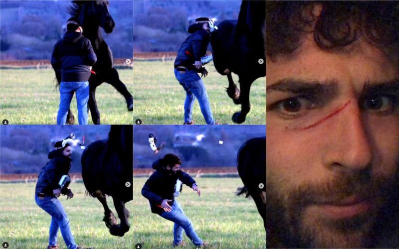 穿越機「追拍」馬匹奔馳獲獎 飛手一度被撞至 FPV 眼鏡飛脫