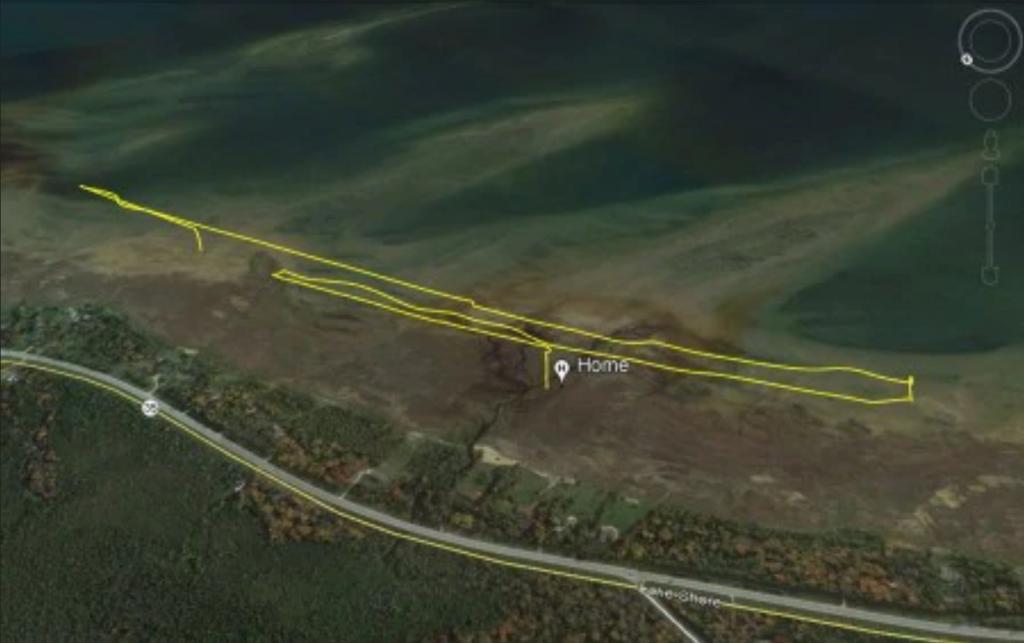 看不順眼?誤當為海鷗? 白頭海鵰把官用測繪無人機轟進湖裡