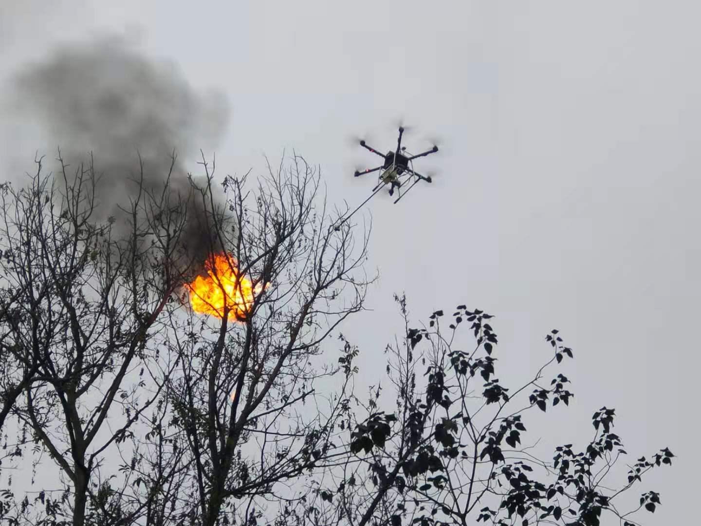 重慶救援隊籌款購無人機 助民眾「火攻」剿滅蜂巢