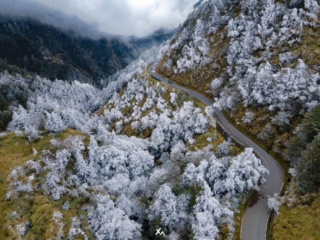 寒流再襲! 達人空拍太平山雪白世界 看見台灣高冷美