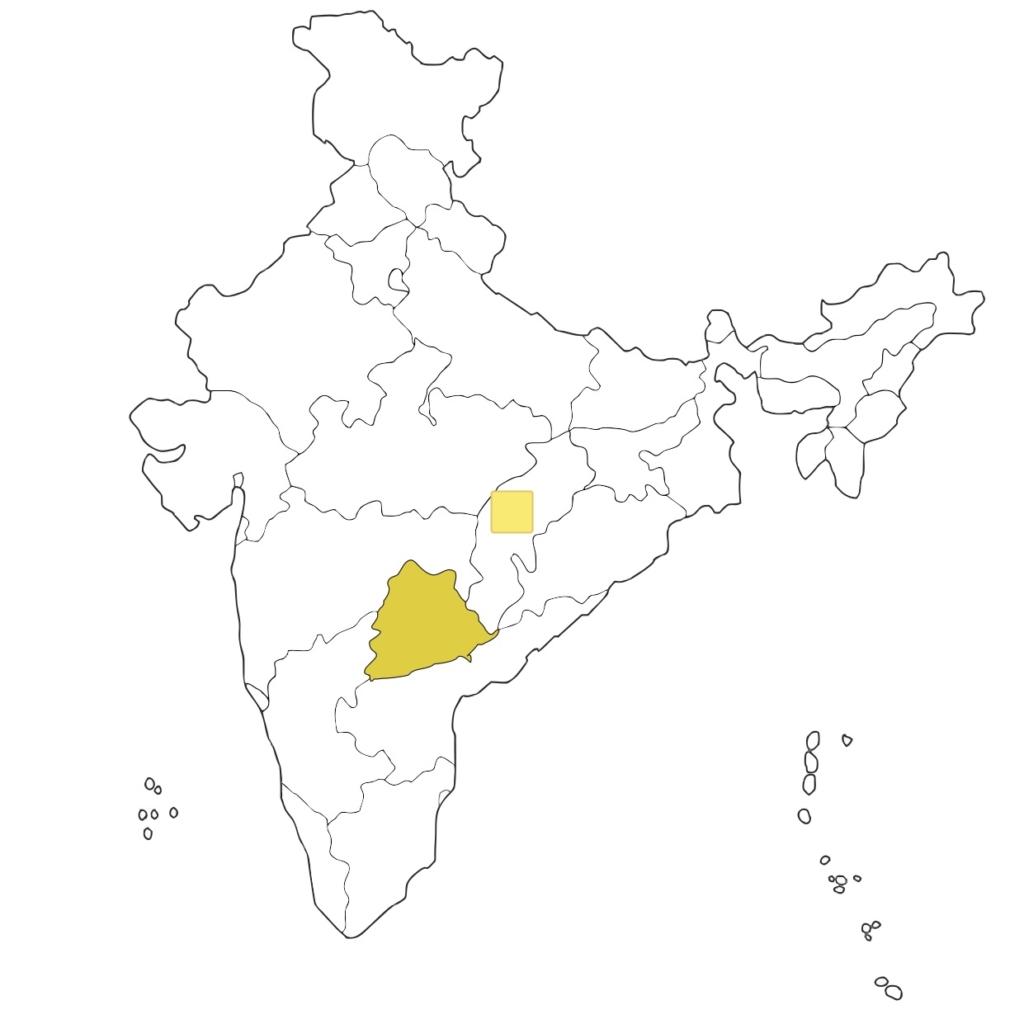 印度疫情仍肆虐 南部城邦試用無人機運送疫苗