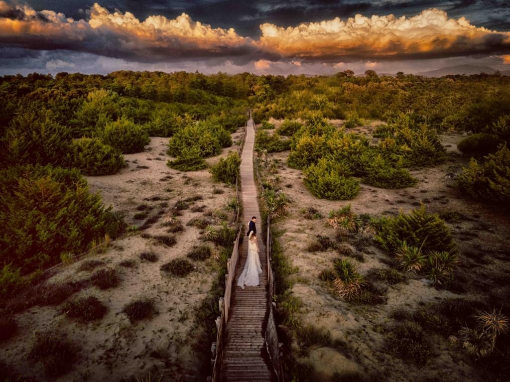 【多圖】來看得獎空拍作品 年度照片捕捉數千腳雁遷徙瞬間