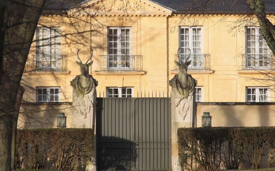 法國總統官邸上空驚現兩無人機 凡爾賽警接手調查